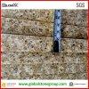 Daltile Geoの斑点3/4  Hotel HospitalityのためのYellow Quartz Countertops