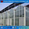 AquaponicsのためのHydroponicシステム工場価格のガラス温室