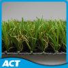 مرغ طبيعيّ اصطناعيّة لأنّ [فرونت رد] اقتصاديّة إستعمال عشب أستراليا [أوسا]