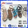 Sapatas de Justnicdress das sandálias das mulheres ocidentais bonitas (TNK50041)