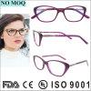 Frame 2016 ótico por atacado dos Eyeglasses de China