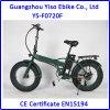 Graisse électrique de vélo de Fodable E avec la batterie de 36V 8.8ah Samsung