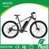 22 Zoll PAS Kohlenstoff-Faser-elektrisches Fahrrad mit Drossel-Option