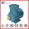 Motor de C.A. elétrico à prova de explosões com 380V 0.75kw