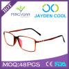 Frame MOQ van het Frame van Eyewear van de Ontwerpers van China Wholesales het Optische Kleine Optische