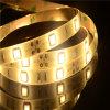 Indicatore luminoso di striscia flessibile della striscia 5050 LED di prezzi di fabbrica LED (LM5050-WN120-Y)
