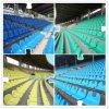Populärer patentierter geformter Stadion-Stuhl der Auslegung-halben Rückseiten-pp. Einspritzung vom Taten-Sport