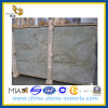 Polished Juparana Granite Slab for Flooring Wall (YQG-GS1019)