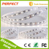 Nuovo disegno 2015! 3528 Current costante LED Strip 20m Length, 24V CC, 4.8W/Meter