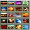 4  aan 72  Kleurrijke Frames van het Canvas van de Kunst