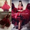 赤いオーガンザのカクテルパーティーの服の小ガモの長さのレースのプロムのイブニング・ドレスY20157