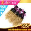 capelli brasiliani di Remy di estensione dei capelli di Ombre dell'arricciatura di Funmi di modo 22
