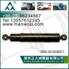 Stoßdämpfer 5010095871 für Renault-LKW-Stoßdämpfer