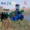 Embarcação da estaca de Weed do fornecedor de China