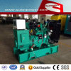 Water Cooled 80kVA/66kw Cummins Power Genset met Ce