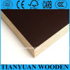 Laminated Plywood for Shuttering/ Concrete Formworks/Film Faced Plywood