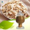 Естественная выдержка корня Astragalus Astragaloside IV HPLC 98%
