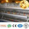 un bâti met en cage le matériel d'aviculture de cages de poussin de poulette