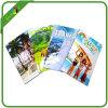 Impression professionnelle de brochure de livret explicatif d'insecte de feuillet de brochure