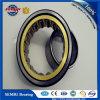 Het Cilindrische Lager van uitstekende kwaliteit van de Rol SKF (NU1007)