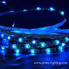 Illuminazione di striscia flessibile del LED (SMD5050)