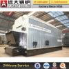 中国のよい製造者最もよい販売法のDzlによって発射される蒸気の食糧ボイラー