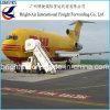 Directe Verschepende Forwarder van de Vracht van de Koerier van de Levering van UPS DHL Uitdrukkelijke Huis-aan-huis Snelle van China aan wereldwijd (de Oekraïne enz.)