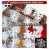 Service d'expédition de décor de maison d'usager de vacances de Noël (CH8123)