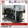 Vendite Ricardo Genset diesel della fabbrica con i motori di Weifang da 10kw a 200kw