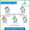 indicatore luminoso subacqueo del raggruppamento del punto di 12W 24VDC RGB LED
