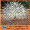 Zoomesh/手によって編まれるAISI 316は網/鳥の網か飼鳥園Mesh/AISI 304/316の適用範囲が広いステンレス鋼ワイヤーロープの網をXがちである