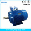 Ye3 0.75kw-2p Cast Iron Electric Motor