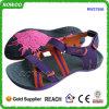 Nouvelles chaussures de santals de dames de la conception Ss16 (RW27556)