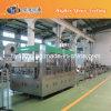 6000 machines de remplissage de l'eau de Bph/équipement/ligne