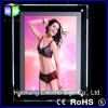 LED Signboard per la memoria Underwear Advertizing Display di Cloth