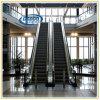 Deeoo Hauptinnenpassagier-Höhenruder-Rolltreppe