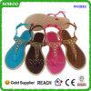 중국 대중적인 작풍 형식 새 모델 여자 PVC 샌들 (RW28053)