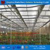직류 전기를 통한 강관 프레임 정원 온실 유형 상업적인 수경법 온실