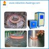 Pequeña máquina de calefacción de inducción del volumen IGBT para el tratamiento térmico