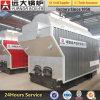 Chaudière à vapeur allumée par charbon de Dzh4-1.25-T 4ton/Hr pour l'industrie de plastiques/usine