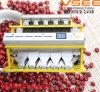 Vsee пульсирует машина сортировщицы цвета фасолей