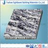 Panneaux de mur en pierre de nid d'abeilles de salle de bains imperméables à l'eau