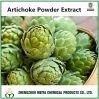 Extrait de poudre d'artichaut de produit d'usine avec Cynarin 2%-10%