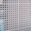 Hojas de aluminio perforadas para las decoraciones de la fachada