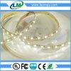 Strisce costanti della corrente 60LEDs/MFlexible LED di SMD 5050 (LM5050-WN60-HL)