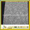 Polished poco costoso G664 Bainbrook Brown Granite per Flooring/Wall Tile