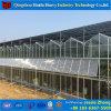 Estufa de vidro de Venlo da fonte da fábrica de China com sistema hidropónico