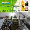 Chaîne de production de remplissage de bouteilles de jus et de thé