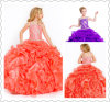 Chegada Nova Spaghetti Organza Cristal Laranja Purple Flower Girl Dress (T10560)
