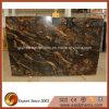 Plak van het Graniet van Saturnia van de goede Kwaliteit de Gouden